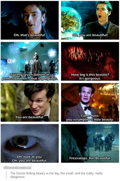 The Doctor finding beauty in the big, the small, and the really, really dangerous.