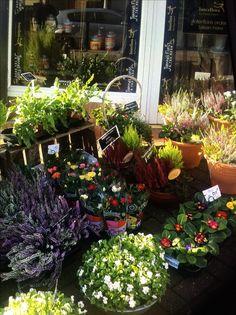 Hawthorn Road florist in Birmingham