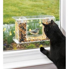 Window-Mount See-Through Clear Plastic Bird Feeder.This is a must for all cat owners. My cats love looking at the birds at the feeder! Crazy Cat Lady, Crazy Cats, Gato Gif, Cat Room, Cat Furniture, Furniture Design, Refurbished Furniture, Repurposed Furniture, Pallet Furniture