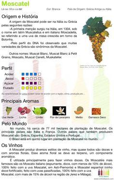 Tipos de uva: Moscatel | vinhobasico.com | #italia #grecia #vinho #enologia #branco Wine Drinks, Cocktail Drinks, Guide Vin, Wine Jobs, Wine Vine, Pinot Noir Wine, Wine Glass Rack, Wine Delivery, Wine Pairings