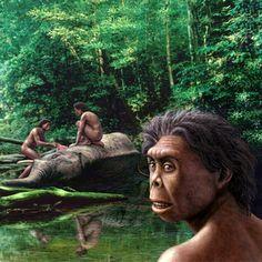 Homo_floresiensis_COSMOS Science Magazine.jpg 400×400 pixels