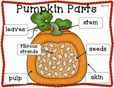 A Neighborhood Kindergarten : Pumpkin Patch CCSS Math, Science, & ELA Centers and Activities!