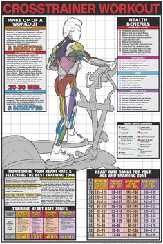 Crosstrainer workout