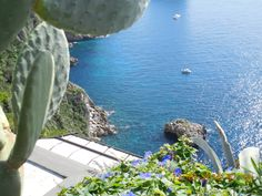 **Gardens of Augustus, Capri: See 1,591 reviews, articles, and 1,130 photos of Gardens of Augustus, ranked No.2 on TripAdvisor among 52 attractions in Capri.