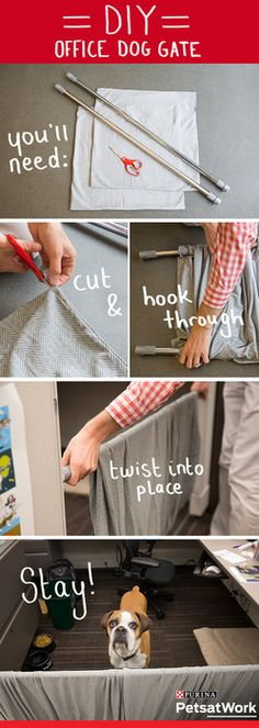 Make your office pet friendly with a DIY dog gate. What you'll need: 2 shower or window curtain tension rods, 2 large pillow cases (stretchy jersey material works great!) and scissors. Step 1: cut the pillow case so there are openings on both sides. Step 2: slide both tension rods through the openings. Step 3: twist the rods into place in the cubicle opening and adjust the fabric as needed.