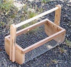 veggiebasket