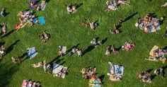 George Steinmetz's aerial photographs of New York City in the summer.