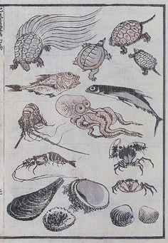 Undersea Creatures from The Hokusai Manga