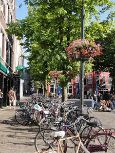 Bicycles of Utrecht   by Venture Minimalists, via Flickr