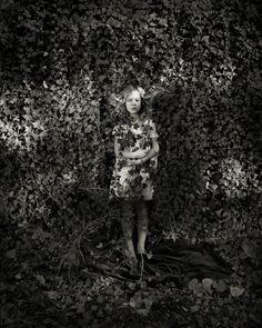 Ivy - Jacqueline Roberts 2011