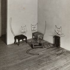 freystupid:  Untitled (Four Cats), 1950  Saul Steinberg