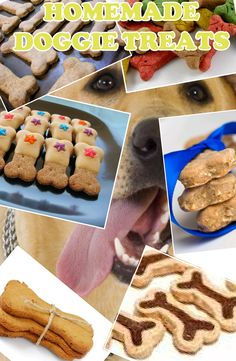Homemade Dog Treats collage