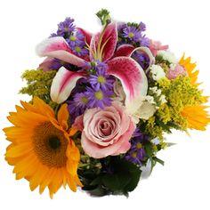 FiftyFlowers.com - Wild Garden Flower Medley