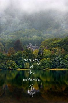 Beauty is the essense of life