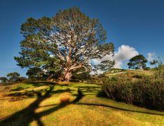 A toca do Hobbit de Bilbo e a Party Tree no Condado