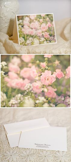 For beautiful fine art floral photo notecards go to https://www.etsy.com/listing/204648218/fairy-rose-floral-photo-notecard.