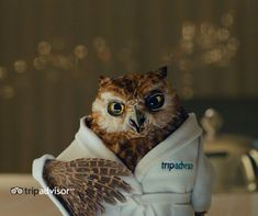 TripAdvisor's CMO on its transformation into a booking site