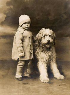 Vintage photo -- Old English Sheepdog