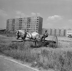 by slovak photographer Anton Podstraský Derelict Places, Abandoned Places, Life Is Like, What Is Life About, Bratislava, Socialism, Anton, Old Photos, The Past