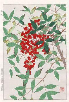Nandina from Shodo Kawarazaki Spring Flower Japanese Woodblock Prints