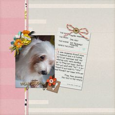 Credits:  - Laurie Ann's My Story kit  - Kim Jensen's Blooming Lush & Knotty Bits  - Heather Joyce's The Hillary font