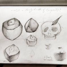 Coco  #illustration  #doodle #Doodling  #coconut  #coco #narial #india #sketch  #sketchbook  #practise #igers #roadtorecovery #mumbai #fruit #pencil #shades #shading #everyday