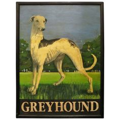 View this item and discover similar for sale at - An authentic English pub sign (one-sided) featuring a painting of a greyhound dog in the foreground, against a line of trees in the background, entitled: Pub Design, Signage Design, Beer Signs, Old Signs, Advertising Signs, Vintage Advertisements, Skinny Dog, Greyhound Art, Most Beautiful Dogs