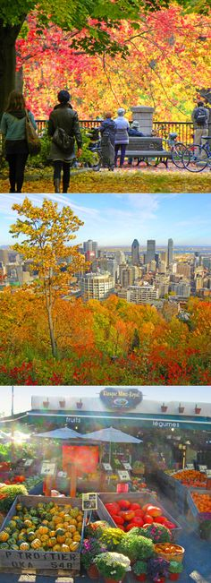 Photo essay of Montreal in the Autumn: http://bbqboy.net/photo-essay-montreal-autumn/  #montreal #autumn #canada