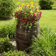 Whiskey Barrel Planter~whole barrel or half both look great! (Easy on your back with less bending) love the look! Gnome Garden, Garden Planters, Beer Garden, Whiskey Barrel Planter, Barrel Flowers, Mums In Pumpkins, Good Whiskey, Plantar, Porch Decorating