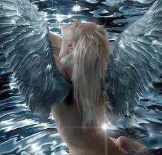 Angel Signs: 6 Common Angel Signs - OM Times Astrology | OM Times Astrology