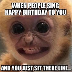 When People Sing Happy Birthday To You https://coolstrange.com/2018/02/17/people-sing-happy-birthday/?utm_campaign=crowdfire&utm_content=crowdfire&utm_medium=social&utm_source=pinterest