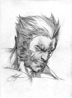 Wolverine Head sketch by ebas