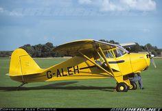 Piper PA-17 Vagabond aircraft picture