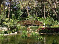 Gardens, Hotel Botanico, Puerto de la Cruz | by tenerife holidays