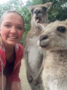 Fancy taking a #kangarooselfie Check out our #Australia #studyabroad