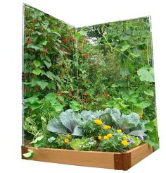 Frame-It-All Veggie Wall Expandable Stainless Steel Trellis System by Frame It All For climbers! Easy Garden, Lawn And Garden, Garden Fun, Garden Gate, Garden Tips, Garden Projects, Permaculture, Wall Trellis, Garden Plants Vegetable
