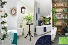 17 fürdőszoba, amely párakedvelő növényekkel az igazi