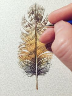 Owl feather painting Original Watercolour study