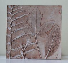 Fossils from Everyday Life Plaster Cast Plant Tiles by