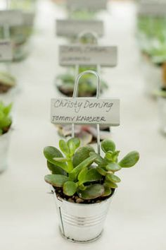 The trifecta: small potted plants make great decor, place cards and parting favors for your guests! Chic Wedding, Wedding Tips, Spring Wedding, Wedding Favors, Wedding Reception, Party Favors, Our Wedding, Wedding Planning, Dream Wedding