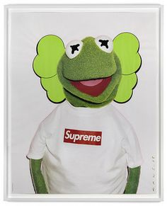 Kaws Kermit Terry Richardson Supreme