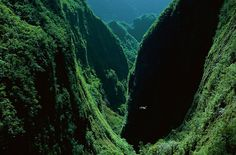 The Gorges of the Bras de Caverne, island of Reunion, France