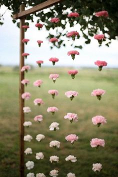 Hang up carnations with twine for a unique flower arrangement that will create the perfect backdrop for a baby shower or wedding.