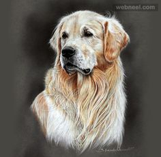 30 Beautiful Dog Drawings and Art works from top artists   Read full article: http://webneel.com/dog-drawings-art   more http://webneel.com/drawings   Follow us www.pinterest.com/webneel