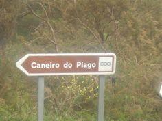 Cartel caneiro do Piago. CC by Virginia Basanta Rodríguez