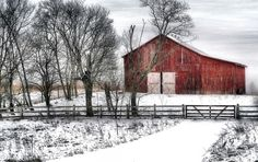 barns - reminds me so much of the barn on my Daddy Don & Mamma Judy's  Farm in Lexington, KY - DawnJubilee Farms.  Good Times <3