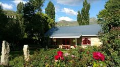 Periwinkle Grove Cottages – Clarens News Mount Horeb, Free State, Rose Bush, Periwinkle, Bed And Breakfast, Cottages, South Africa, How To Find Out, Sunrise