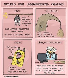 """Nature's Most Underappreciated Creatures"" by Sebastien Millon #webcomics  Amazing guy, that Bob."