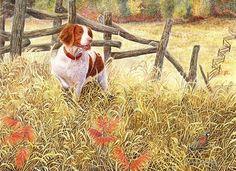 """Brittany and Quail"" A Limited Edition Brittany Spaniel Print - Michael Steddum"