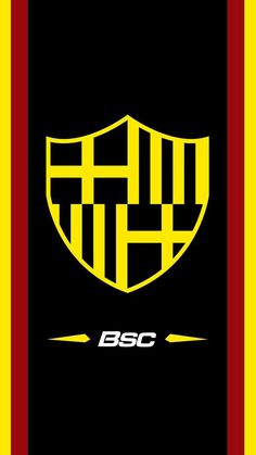 Fc Barcelona, Barcelona Ecuador, Barcelona Sports, Sports Clubs, Logos, Cuenca Ecuador, Converse, Android, Erika